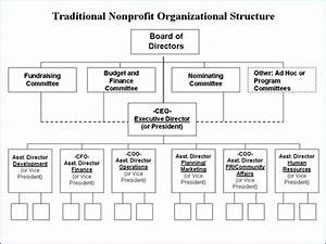 Traditional Nonprofit Organizational Structure | Business ...