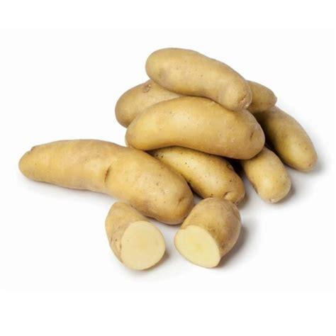 cuisiner des pommes de terre ratte pommes de terre ratte groupe epicia