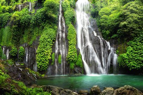 World's Most Beautiful Rainforests | Topic News