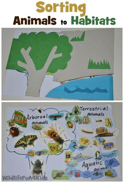 sorting animals to habitats wildlife 4 kid 310   83225491c8fac457472cef8e8224f0f7