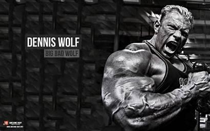 Bodybuilding Wallpapers Wolf Building Dennis Powerlifting Desktop