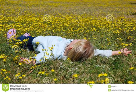 child lying  flower field stock photography image