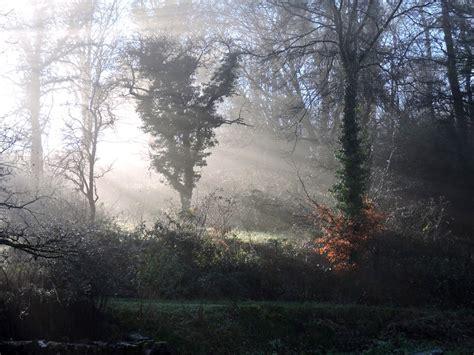 chambre des metiers meuse balade en forêt en partant de chez nous