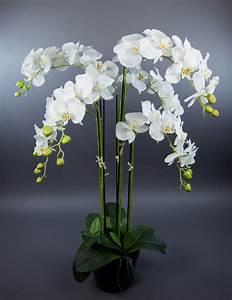 Kunstblumen Orchideen Topf : orchidee 90x60cm wei ga kunstpflanzen k nstliche blumen orchideen kunstblumen eur 99 90 ~ Whattoseeinmadrid.com Haus und Dekorationen
