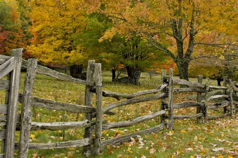 split rail fence  fall colors stock photo image