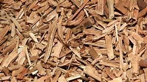 Chaudière Bois Déchiqueté Comparatif : chaudi res granul s de bois hargassner nailloux 31 toulouse ~ Premium-room.com Idées de Décoration