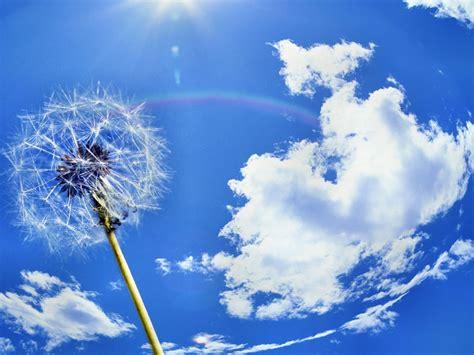 vasco sopra le nuvole il cielo azzurro su fj
