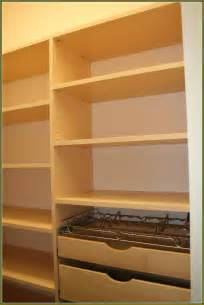 small kitchen pantry ideas building a bookcase with adjustable shelves home design