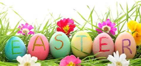 happy easter stafford 39 s