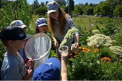Science Citizen Stewardship Bc Coquitlam Pollinator Explorer