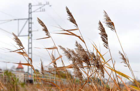 Nedēļa būs silta un lietaina, daudzviet gaidāmas spēcīgas vēja brāzmas | BNN - ZIŅAS AR VĒRTĪBU