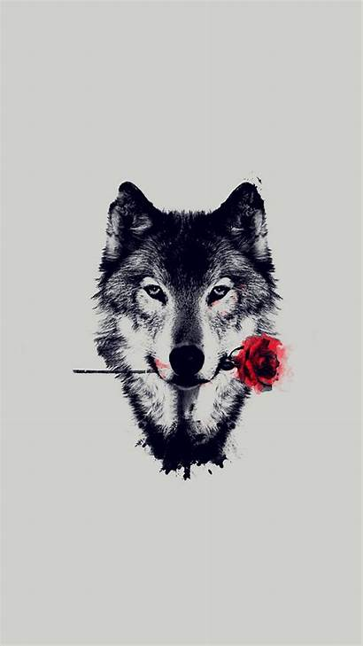Wolf Rose Iphone Resolution 3d King