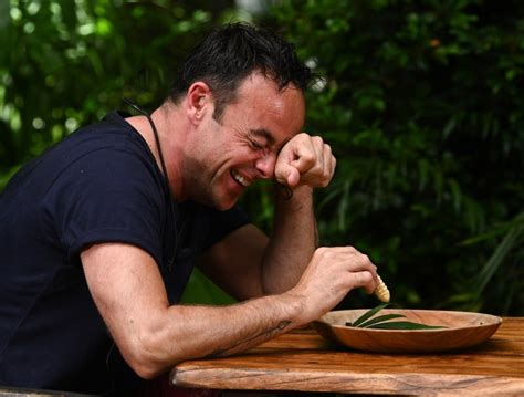 Ant and Dec take on I'm A Celebrity trials in new special ...