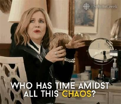 Busy Creek Chaos Gifs Funny Schitt Memes