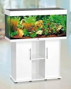 Großes Aquarium Kaufen : juwel aquarium rio 180 wei 180 l schrank 100sb g nstig kaufen im koi shop ~ Frokenaadalensverden.com Haus und Dekorationen