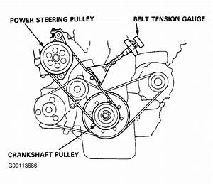 1993 Honda Civic Serpentine Belt Routing And Timing Belt Diagrams