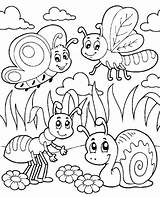 Coloring Insects Insect sketch template