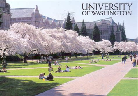 University Of Washington  Via Airmail. Aluminium Seamless Gutters Mr Roof Ann Arbor. New Business Marketing Ideas. U Of M Graduate Programs Ira Annuity Rollover. Rehab Center In Florida Thai Travel Insurance. Osha Confined Space Definition. Www Glendale Community College. Best Pain Medicine For Back Pain. It Help Desk Interview Questions