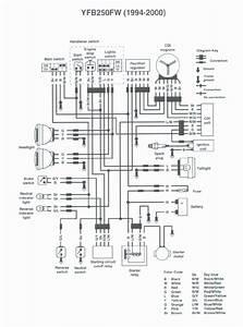 Yamaha Timberwolf 4 Wiring  U2013 Simple Guide About Wiring