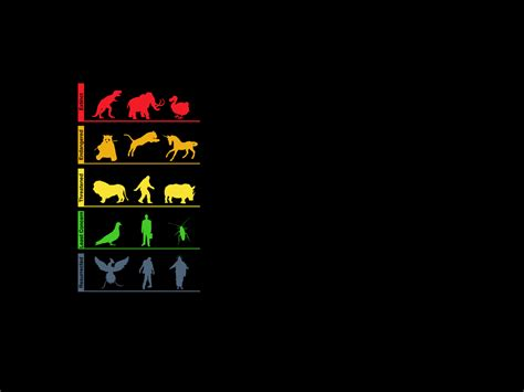Evolution Wallpaper by Evolution Minimalism Hd Inspiration 4k Wallpapers