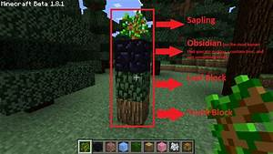 Minecraft Mod Huge Trees Are Huge GamingReality