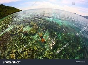 Sabah, Malaysia, Nov04, 2013, Unidentified, Sea, Stock, Photo