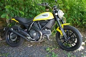 Ducati Scrambler 800 : ducati scrambler 800 q d muffler torque power motorcycles ~ Medecine-chirurgie-esthetiques.com Avis de Voitures