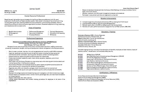 professional resume and cv writing professional resume and cv sles resume writing