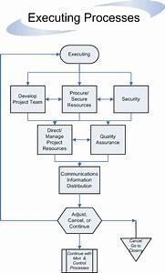 Executing Processes Flow