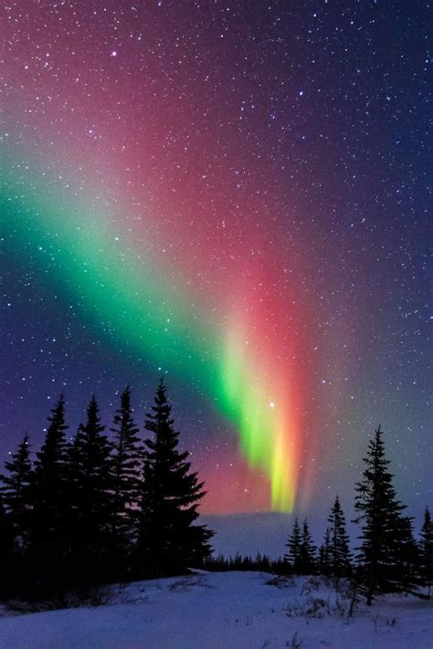 canada northern lights best 25 nature ideas on photography