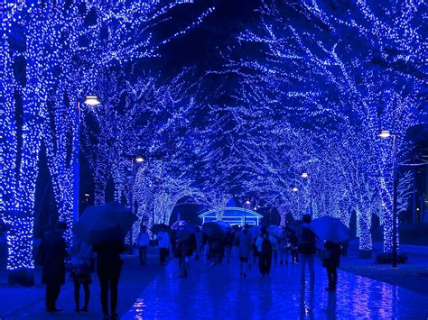 christmas lights in the city of logan where to see the world s best lights cond 233