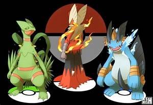 Some Cool Fake Gen 3 Starter Mega Evolution Art Pokemon