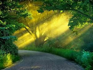 Nature Wallpaper Desktop Full HD Download free hd ...