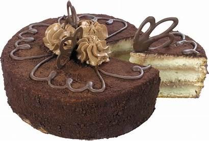 Cake Chocolate Einfache Geburtstagstorte Schokolade Tubes Birthday