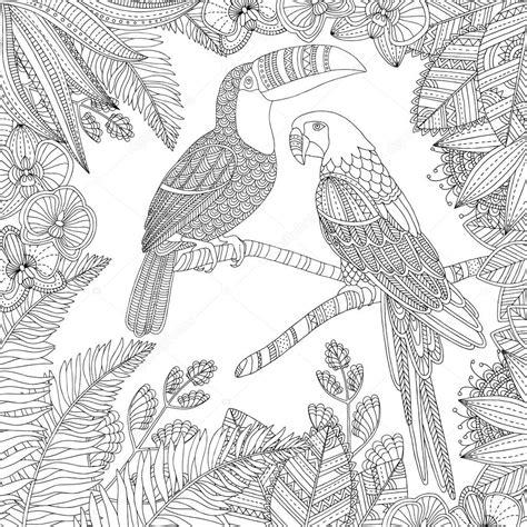 Twoje internetowe kolorowanki dla dzieci. Ptak Tukan wektor wyciągnąć rękę i ara papuga tropikalny ilustracja dla dorosłych kolorowanka ...