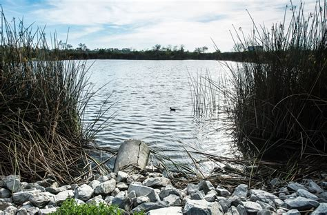 californias water quality challenges public policy