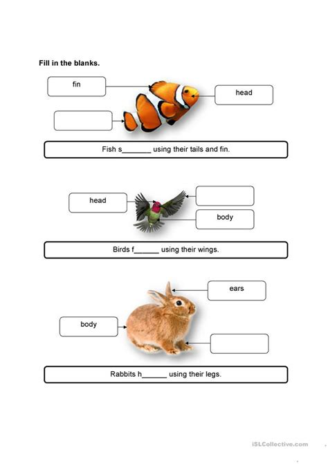 animals   movement worksheet  esl printable