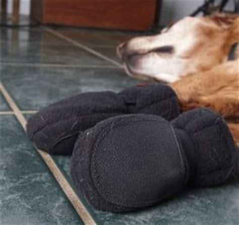 5 indoor dog booties for hardwood floors no slip
