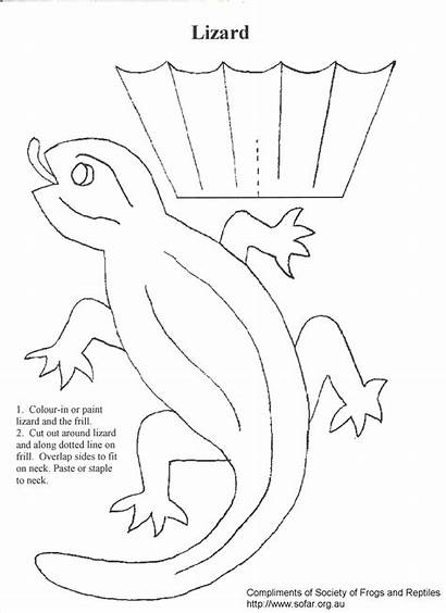 Lizard Craft Crafts Frilled Neck Coloring Reptile