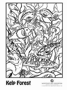 25 best Dragon Art images on Pinterest   Dragon tattoos ...