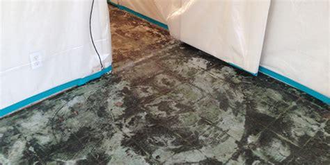how to remove asbestos floor tile mastic gurus floor