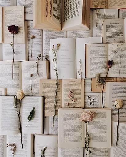 Fairy Romantic Aesthetic Meetings Books Reading Wallpapers