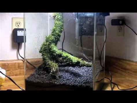 Substrate Aquascape by Aquascaping A Planted Aquarium Fluval Flora Nano Fish Tank