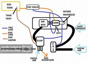 Tao 50cc Scooter Wiring Diagram For 2010  Tao  Free Engine