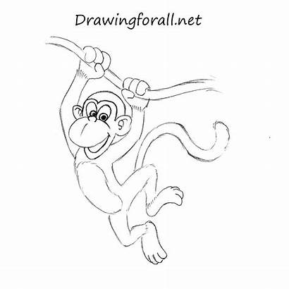 Monkey Draw Drawingforall