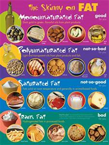 Pics For > Saturated Fat Examples