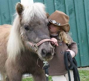 13 Reasons Why Ponies Are A Girl's Best Friend. - Habitat ...
