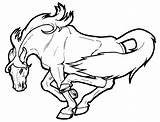 Coloring Horses Pages Wild Horse Cartoon Printable sketch template