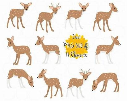 Deer Fallow Clip Clipart Printable Instant Graphics