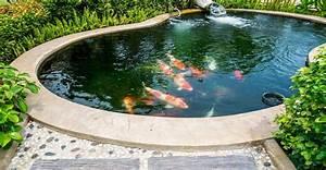 Bassin Exterieur Preforme : les bassins de jardin en b ton dossier ~ Premium-room.com Idées de Décoration